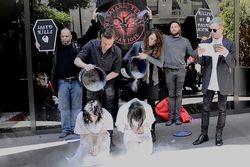 Satanistas lançam campanha pró-aborto