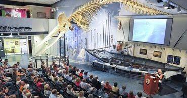 Durante Yom Kippur, congregação lê o livro de Jonas sob esqueleto de baleia